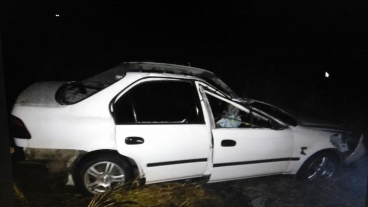 Лось спровоцировал смертельную аварию на трассе. Выжил только ребенок