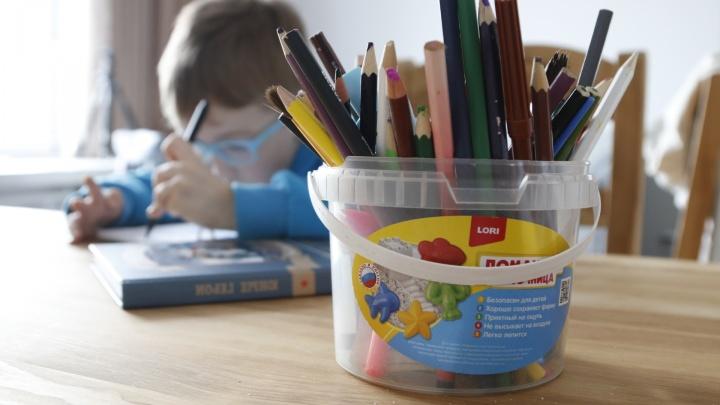 В Архангельской области ввели льготы на питание и проезд для многодетных семей, где дети учатся дома