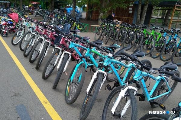 Пока всех сдающих велосипеды предпринимателей на острове называют незаконными
