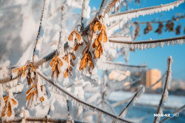 В регионе сохранятся сильные морозы
