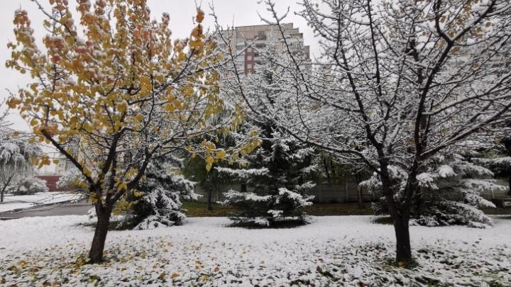 Всю рабочую неделю красноярцев ждет снег с дождем
