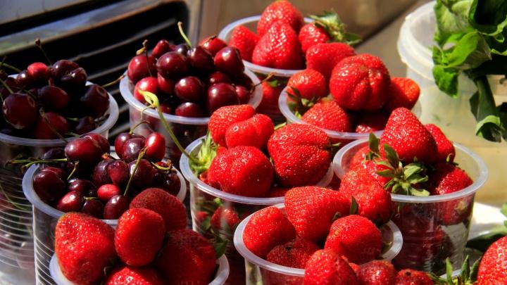200, а через дорогу — по 80. Пробуем первую клубнику, черешню и хорошие помидоры в Новосибирске. Вкусно ли?