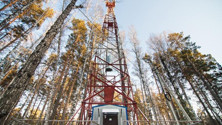 В 70 поселках Красноярского края впервые появился 4G-интернет МегаФона