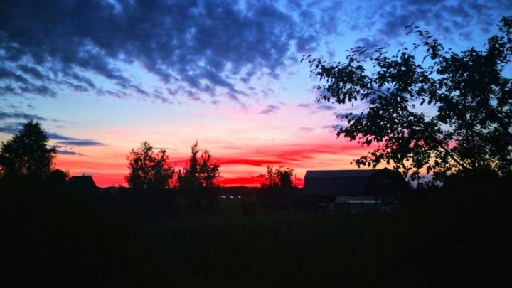 Малиновые небеса: закат над городом заворожил новосибирцев
