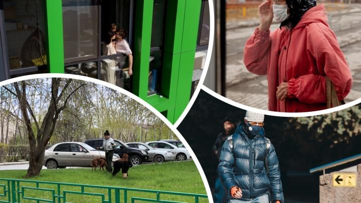 Люди в масках с собаками и полупустой центр: репортаж, как менялась Тюмень за месяц самоизоляции