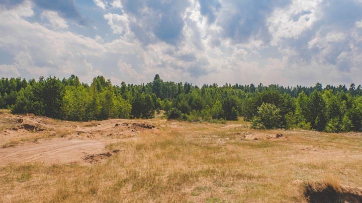 Пермяков просят помочь в поисках пропавшего мужчины, который ушел в лес