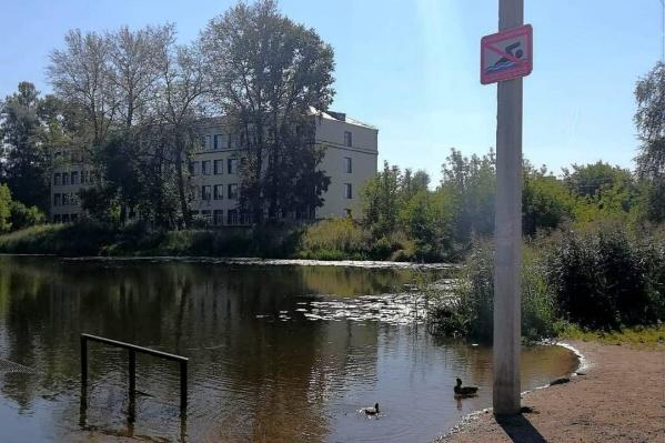 У пруда поставили табличку с запретом