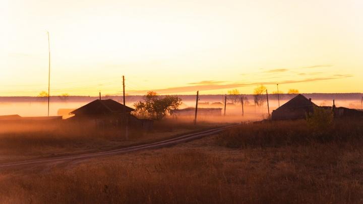 «Крикнешь, а в ответ тишина»: фоторепортаж из полузаброшенной деревни в Омской области