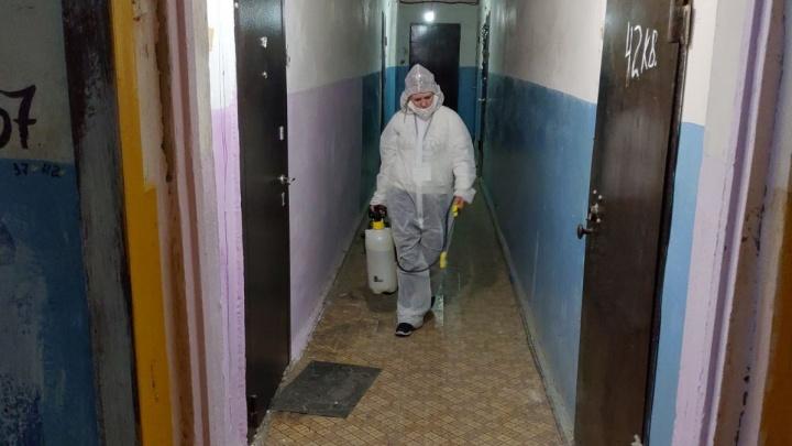 Фирма Самкаева, получившая контракт на дезинфекцию всех домов Тюмени, провалила задачу. Помогут УК