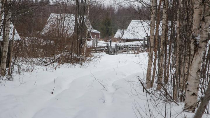 В прокуратуре рассказали об итогах проверки по тексту 29.RU о деревне, где 10 лет не чистили дорогу