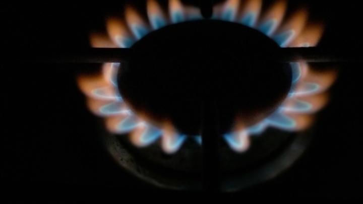 Пермяки заметили, что цвет газа на кухне изменился. Объясняем, почему это может быть опасно