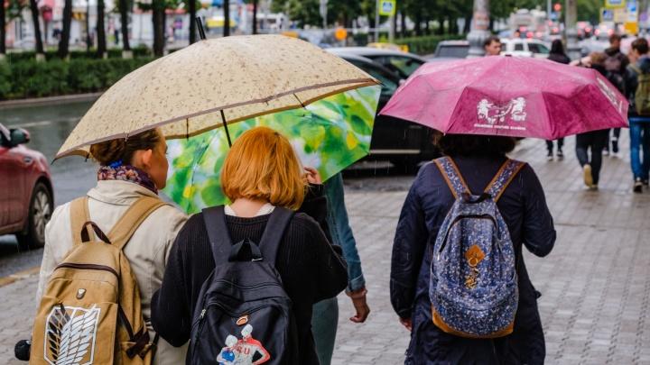 Синоптики рассказали о погоде в Прикамье на предстоящую неделю