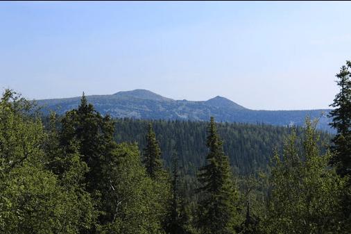 В Башкирии туристка оказалась под каменной глыбой во время спуска с Медвежьей горы