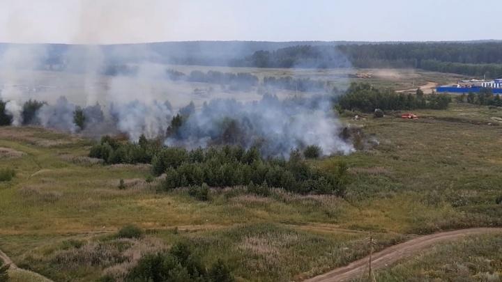 Огонь прошел один гектар: на Широкой Речке вспыхнул природный пожар