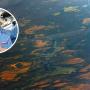 Космонавт Иван Вагнер показал, как с борта МКС выглядит его родной посёлок в Архангельской области