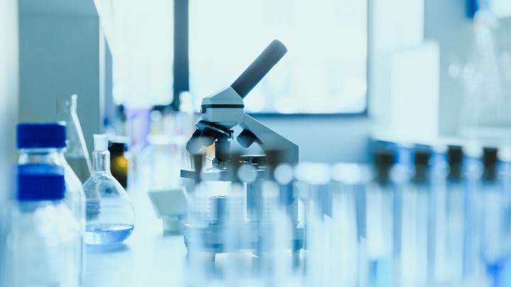 У 8,9% тюменцев, сдавших анализы в частном медцентре, обнаружили антитела к коронавирусу