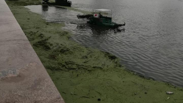 Власти объявили о начале очистки реки Миасс около ТРК «Родник»