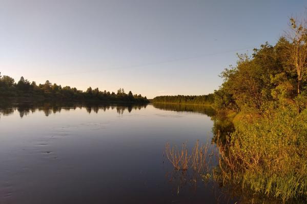 Девочка утонула в реке Онеге