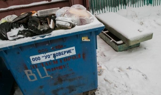 Власти Кургана предложили ставить мусорные баки в частном секторе ближе к дорогам