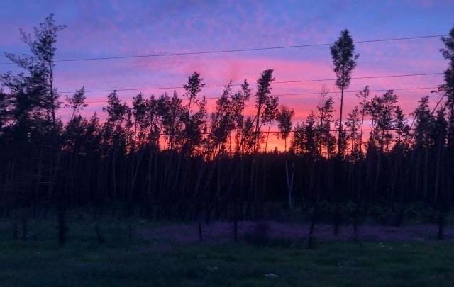 Акварельное небо: новосибирцев удивил невероятно красочный закат над городом
