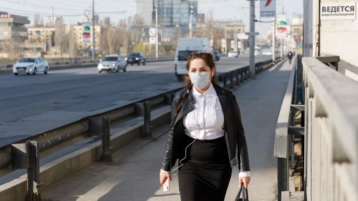 Оформляем цифровые пропуска: в Волгоградской области 212 заражённых коронавирусом