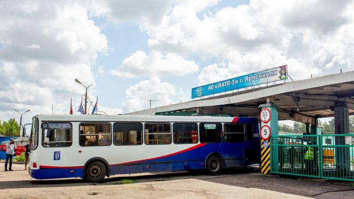 «Люди не выдерживают и выходят на полпути»: в Ярославле в разгар лета в автобусах включили отопление