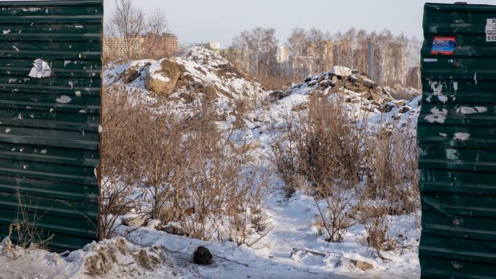 В челябинской мэрии прокомментировали раздел земли Юревича, где обещали экстрим-парк за 2миллиарда