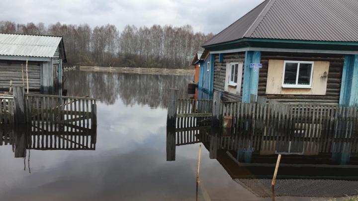 Затопленные дома и люди на лодках: фоторепортаж из тюменских деревень, которые превратились в Венецию