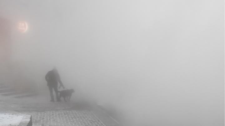 Из-за кипятка ничего не видно: на Эрвье в Тюмени произошла коммунальная авария