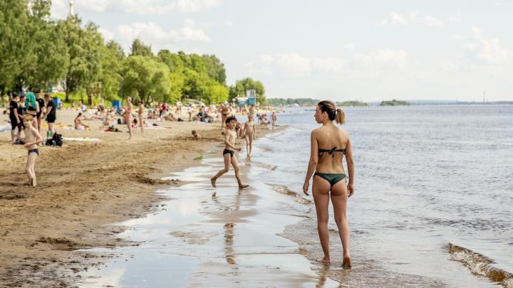 Тверицкий пляж в Ярославле закрыли для купания