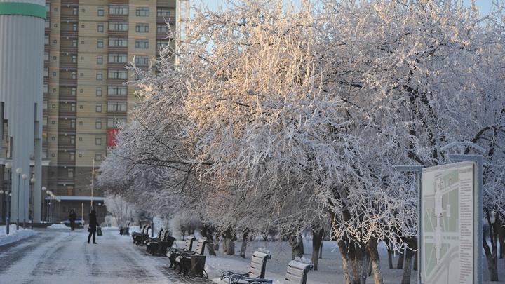 Оставайтесь дома! На Тюменскую область надвигаются тридцатиградусные морозы