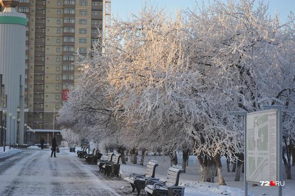 Тридцатиградусные морозы продержатся в Тюмени и области до конца недели