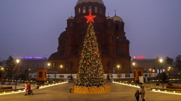 И вот она нарядная: в Александровский сад переселили 12-метровую новогоднюю ель