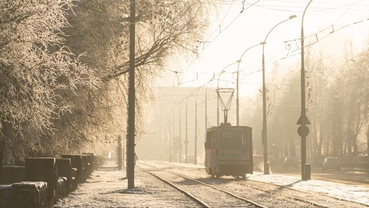 Пермь заняла второе место в рейтинге развития общественного транспорта России