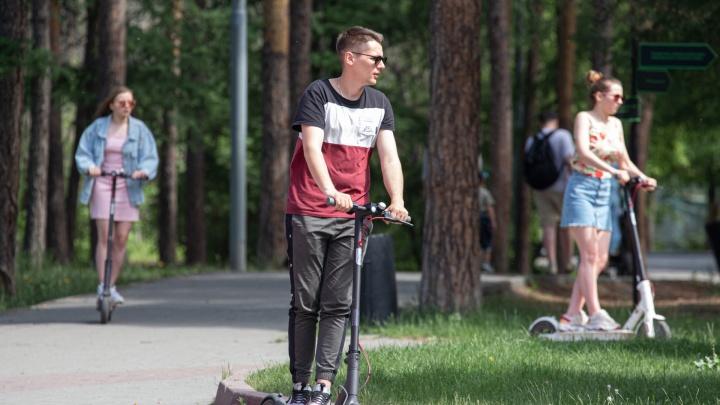 Синоптики рассказали, какая погода будет в Челябинске в июле