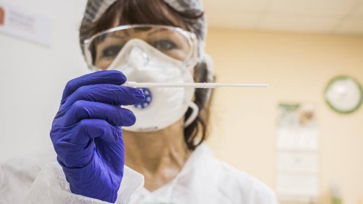 За сутки у 377 человек в Архангельской области обнаружили коронавирус. Данные оперштаба региона