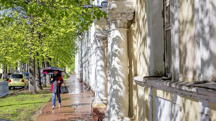 Погода отстаёт на две недели от календаря: синоптики рассказали, чего ждать в ближайшие дни