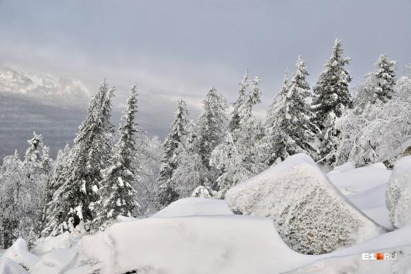 В знойный день от созерцания зимнего пейзажа становится прохладней