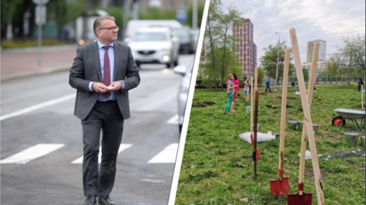 Мэрия обратится в ФСБ из-за скандала вокруг вырубки деревьев на берегу Городского пруда