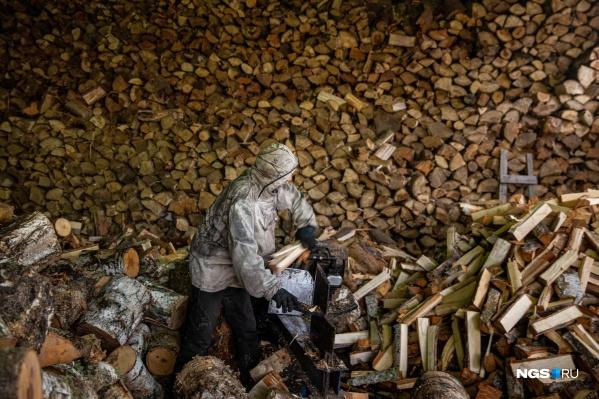Право на рубку лесов есть у 226 компаний региона