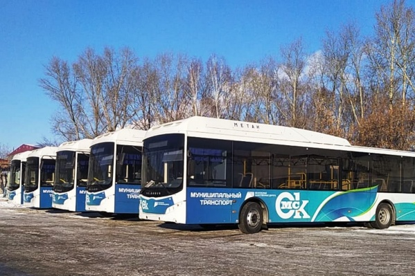 Новые автобусы оформили цветами омского муниципального транспорта еще на заводе