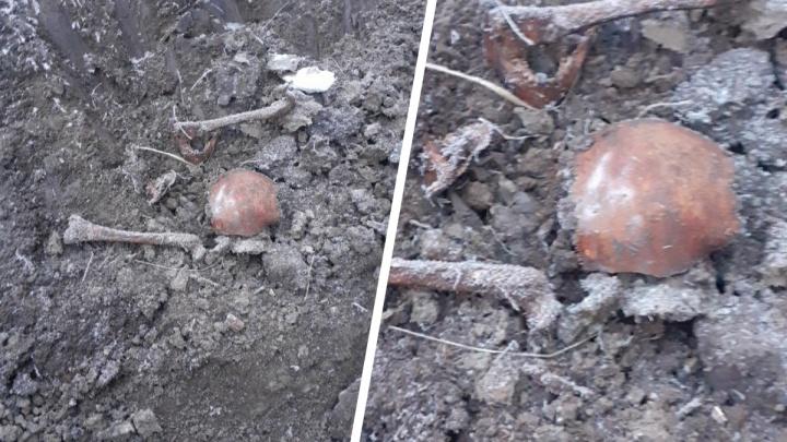 В Тюменском районе рабочие нашли человеческие останки