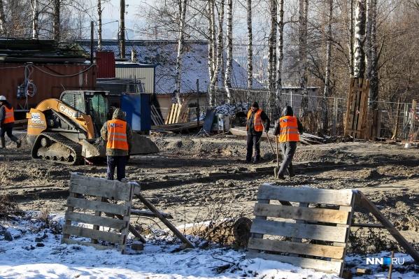 Работы будут проводиться в парке в том числе и зимой