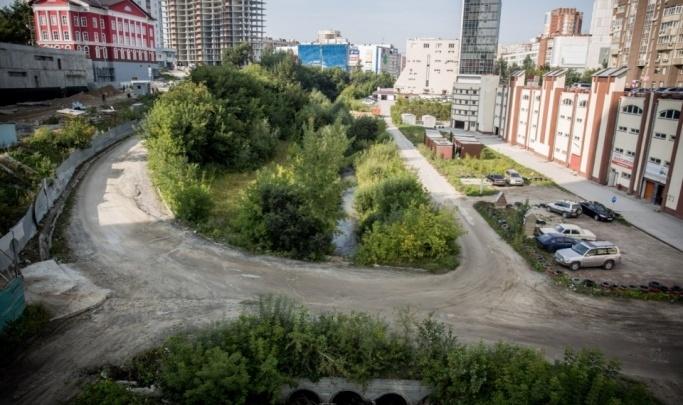В Новосибирске хотят сделать новый парк — он сможет конкурировать с Михайловской набережной