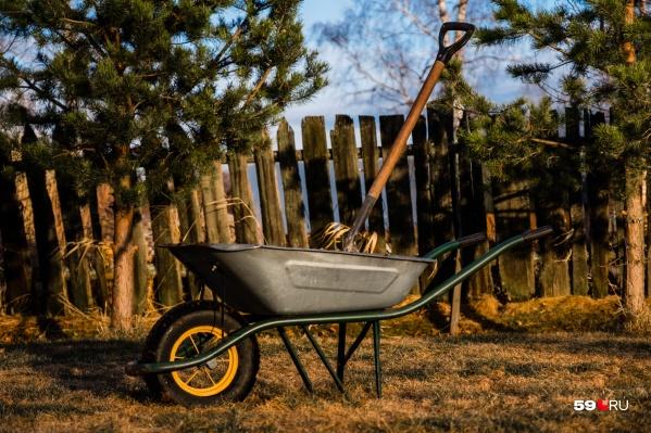 Скорее всего, пермяки смогут вернуться к садоводству