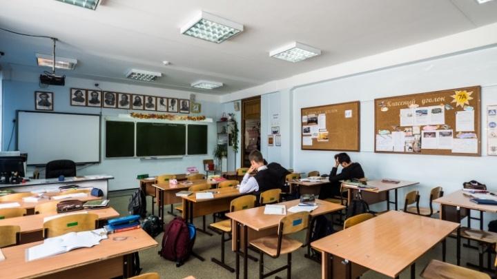 Новосибирские школы продлевают учебный год — летние каникулы кое-где начнутся в конце июня