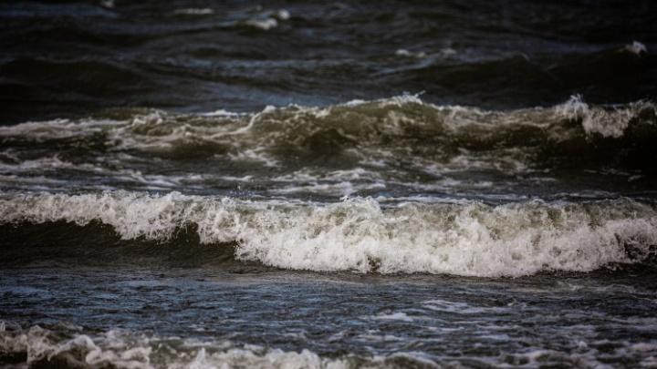 Новосибирцев предупредили о сильном ветре: порывы будут достигать 20 м/с