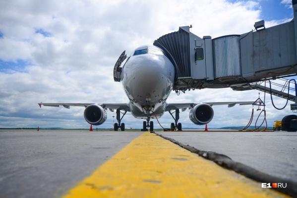 Россияне смогут вернуться домой на чартерных рейсах
