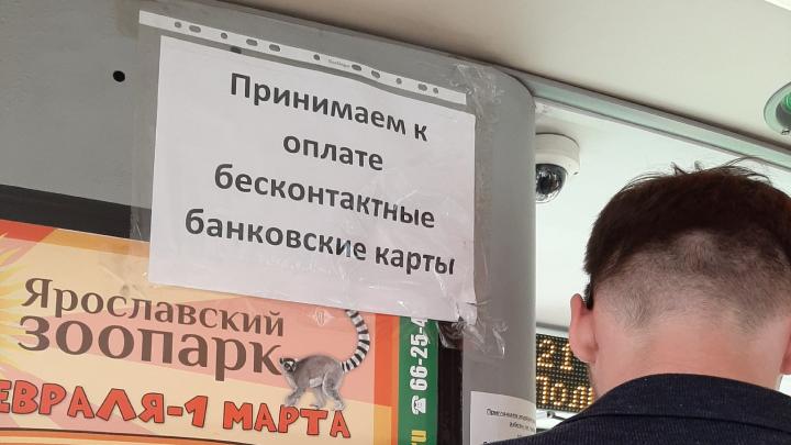 В ярославских маршрутках ввели оплату по картам: где можно расплатиться по безналу