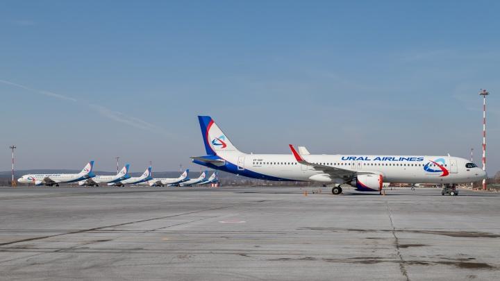 Ждут разрешения на взлет: «Уральские авиалинии» показали припаркованные в Кольцово Airbus